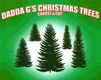 Dadda G's Christmas Trees Logo