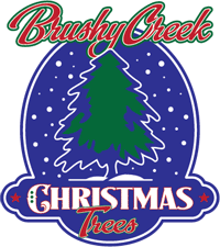 Brushy Creek Christmas Trees Logo